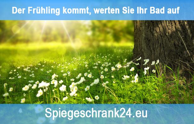 Bild blog-03-2019-spiegelschrank-fruehling
